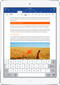 MS Word on iPad